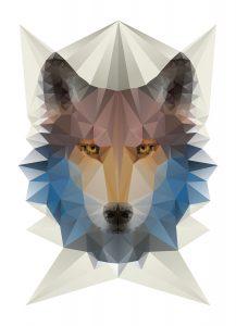 Wolf_Geometric